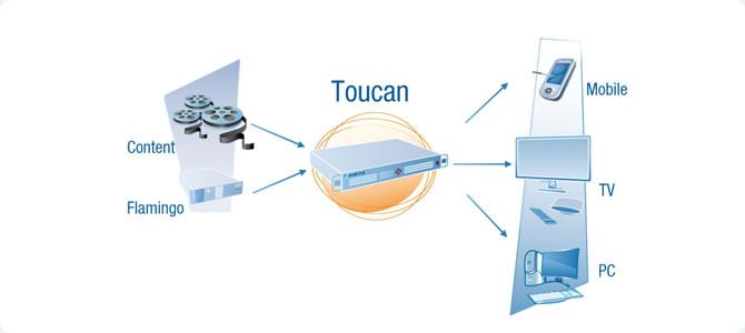 Anevia Toucan